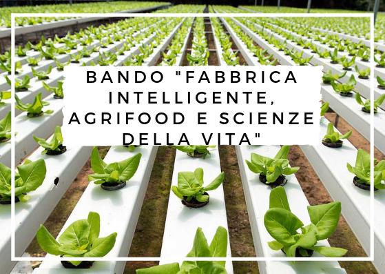 """Bando """"Fabbrica Intelligente, Agrifood e Scienze della Vita"""""""